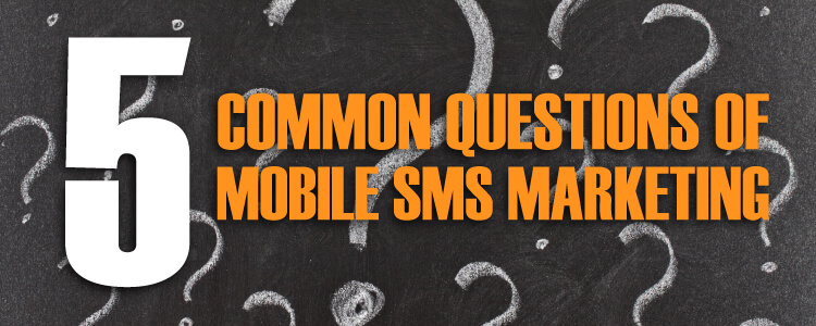 5 common questions of mobile bulk sms marketing solutions 5 common questions, Common questions, Sms questions, Sms marketing, marketing questions, Five questions, Five Common Questions, Questions of marketing